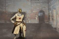 Крестоносец стоковое изображение rf