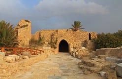Крестоносцы стробируют в национальном парке Caesarea Maritima Стоковые Фото