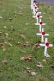 Кресты мака Стоковое Изображение RF
