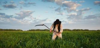 Крестьянин косит траву в поле стоковое фото rf