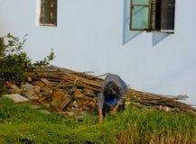 Крестьянская женщина делая работу фермы в саде фермы Стоковые Изображения