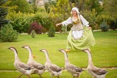 Крестьянская женщина пасет гусынь на луге Стоковые Изображения