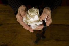 крест вручает старую белизну розы Стоковая Фотография RF