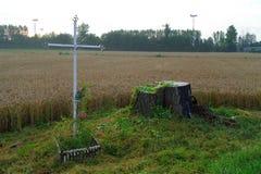 Крест в поле Стоковое Изображение