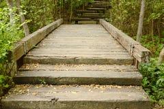 Крест деревянного моста меньший канал в лесе мангровы Стоковые Изображения