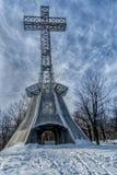Крест держателя королевский в зиме Стоковые Изображения