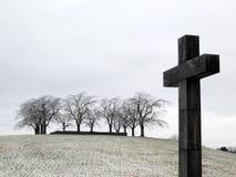 Крест кладбища с деревьями стоковые изображения