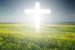 Крест света Стоковые Фотографии RF