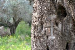 Крест Святой Земли Стоковое Изображение RF