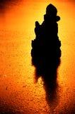 Кривая дороги выпуклого зеркала отражая на горе Стоковое Изображение RF