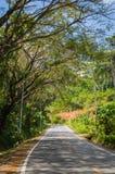 Кривая дороги Стоковые Фотографии RF
