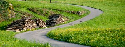 Кривые в проселочной дороге с цветками I весны стоковое фото rf