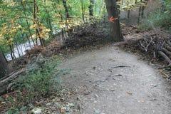 Кривые пути на холме petÅ™Ãn, Праге, чехии стоковое фото rf