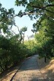 Кривые пути на холме petÅ™Ãn, Праге, чехии стоковое изображение