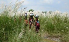 Кризис питьевой воды стоковые фото