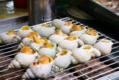 кристаллические shellfish whelk Стоковые Изображения