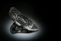 кристаллический ботинок Стоковое фото RF
