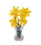 кристаллический желтый цвет вазы daffodils Стоковые Фотографии RF