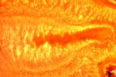 кристаллический кварц intergrowths Стоковые Фото