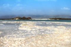 Кристаллический пляж соли на мертвом морском побережье, Израиле стоковые фотографии rf