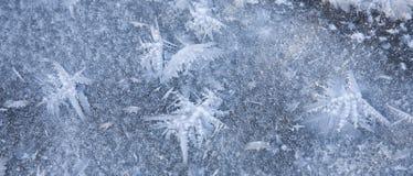 кристаллы бабочек морозят походить Стоковое Изображение RF