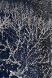 кристаллы освещают поляризовывано стоковые изображения