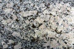 Кристаллы orthoclase утеса гранита Ghiandone стоковая фотография rf