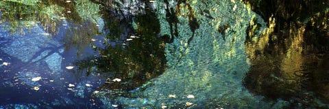 Кристаллическая весна 1 Стоковые Фото