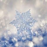Кристаллическая голубая снежинка Стоковые Изображения