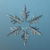 Кристалл снежинки естественный Стоковые Фото