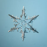 Кристалл снежинки естественный Стоковые Изображения