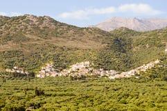 Критянин деревни садился на насест на холме среди оливкового дерева Стоковые Изображения RF
