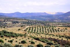 Крит, греческий остров Стоковое Изображение RF