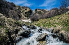 Кричащее река Стоковое Изображение