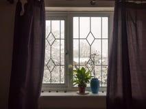кровать вазы внутреннего завода windowsill комнаты дома окна занавесов голубая Стоковые Изображения