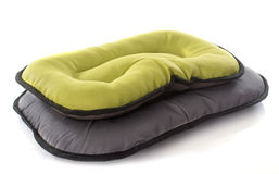 Кровать собаки Стоковые Фотографии RF