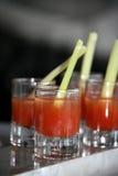 кровопролитное питье mary Стоковое Изображение RF