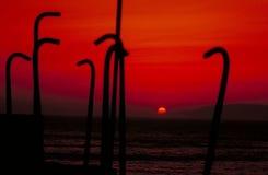 кровопролитный заход солнца Стоковая Фотография RF