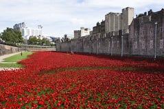Кровопролитная башня Лондона Стоковые Изображения