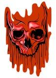 Кровопролитный череп Стоковые Изображения