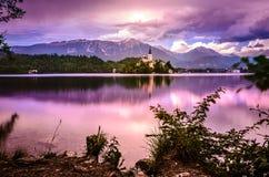 кровоточенная панорама озера Стоковое Изображение RF