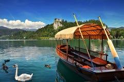 Кровоточенное озеро, Словения, Европа Стоковое Изображение
