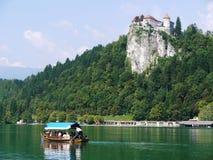 Кровоточенное озеро, Словения Стоковая Фотография