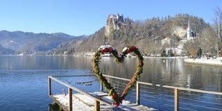 Кровоточенный замок в зиме, Словения стоковое фото rf