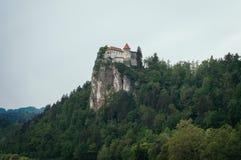 Кровоточенный замок окруженный зеленым лесом Стоковое фото RF