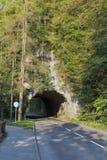 Кровоточенный тоннель автомобиля озера, Словения Стоковые Фото