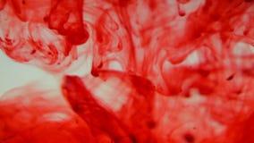 Кровь в воде видеоматериал