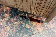 Кровь пропуская на бетонной стене к полу grunge Стоковые Изображения RF