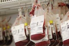 кровь Стоковая Фотография RF