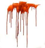 кровь Стоковые Фотографии RF
